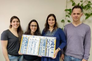 Bar-Ilan University researchers discover a mosaic-like gene deletion and duplication pattern shaping the immune system