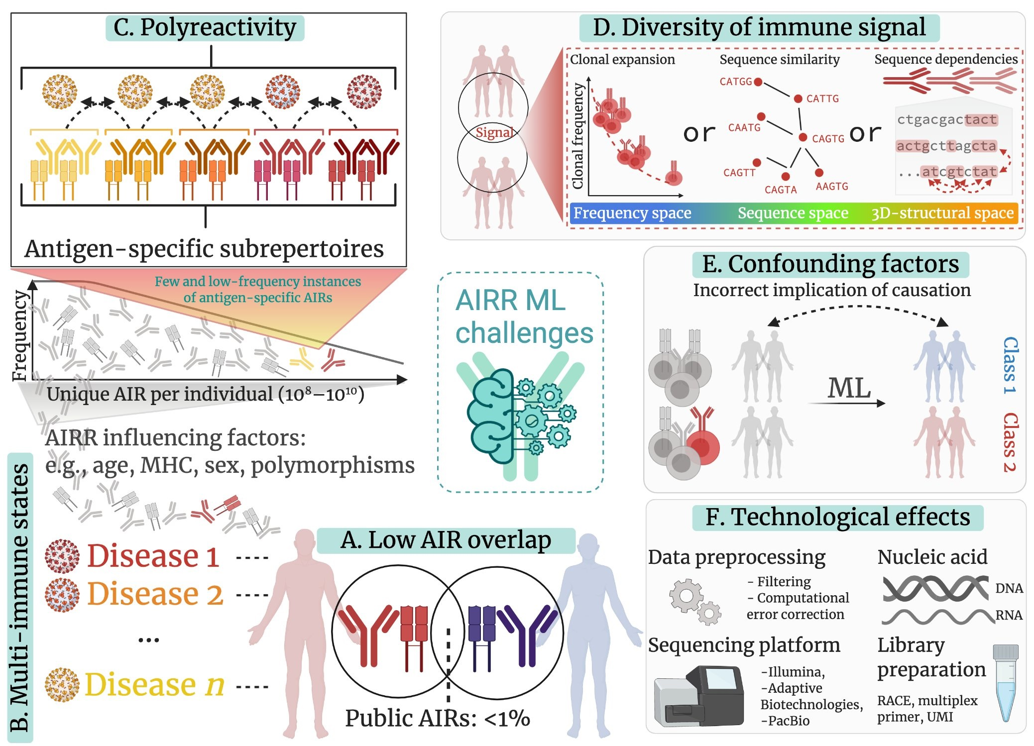 Mining adaptive immune receptor repertoires for biological and clinical information using machine learning